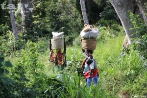 50. Ženy v keňské buši